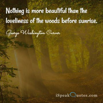 Nothing is more beautiful than the loveliness of t